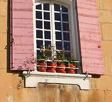 A Shuttered Window in Arles by Laurel Talabere