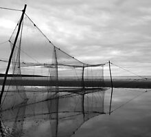 stake nets by Donald Cameron