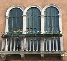 Venician Window by mariondixon