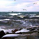 Ice on the rocks by Alan Mattison