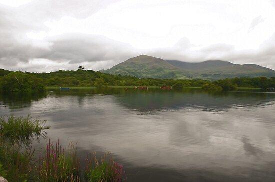 Lakes of Killarney by Martina Fagan