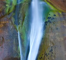 Desert Falls Abstract Patterns and Colors, Calf Creek Falls, Utah by Alan C Williams