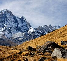 Annapurna South I by Harry Oldmeadow