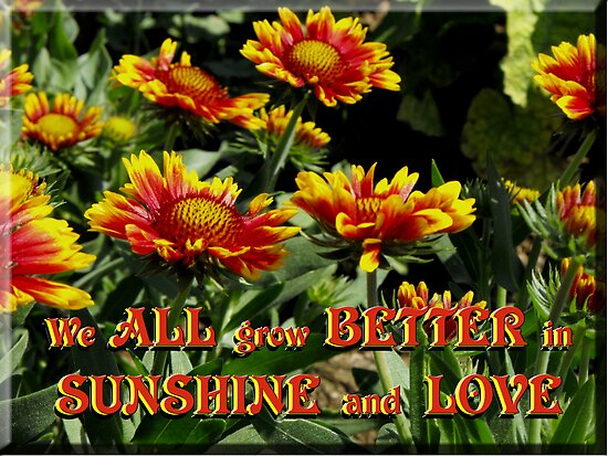 We all grow better in Sunshine and Love  by Jan  Tribe