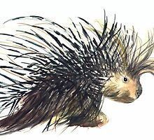 Coldprickly, a children's book story and illustration by H Frasier