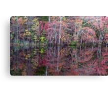 Canton, New Jersey USA Pond Peak Color Canvas Print