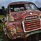 Rusting truck, maroota. by Matt kelly.