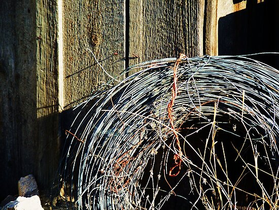 Old Bailing Wire Holding Up Old Shed.....The shed is since gone!! by trueblvr