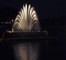 Fountains, lights and music in display by sstarlightss
