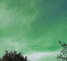 green sky.. by kangarookid
