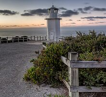 Always Vigilant • Cape Liptrap National Park • Victoria by William Bullimore
