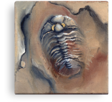 Goldeneye Trilobite Canvas Print