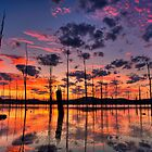 Stunning Waterscapes by Mel Sinclair