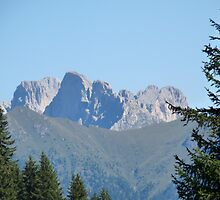 Mount Latemar, Val di Fiemme, Dolomiti, Italy  by presbi