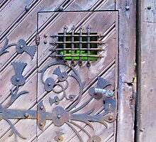What is behind the door... by Christine Wilson
