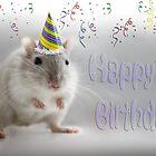 Happy Birthday by Squealia