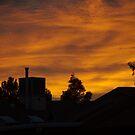 Good Morning Sierra Vista by Timothy L. Gernert