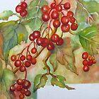 Kalyna Berries 2 by bevmorgan