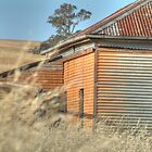 Old House near Grenfell NSW by Bryan Cossart