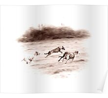 Wolfhounds Coursing Poster