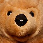 teddy bear by marinamagri
