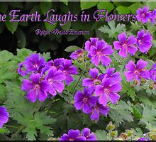 The Earth Laughs in Flowers (country garden card #6) by Jan  Tribe