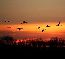 At Sundown by Victoria Jostes