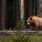 On the Forest's Edge by Wayson Wight