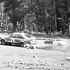 Endrust Forest Rally, Mt Crawford by SusanAdey