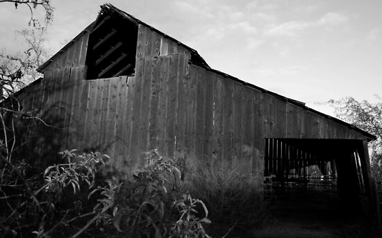 Old Visalia Barn by Ron Hannah