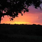 Texas Sunset by emjay4010