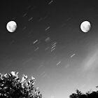 Lunar Anomaly by J. Mark McCarthy