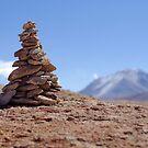 Altiplano Dreaming - Bolivia by Matt  Streatfeild