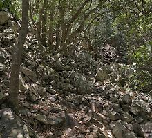 Rocky forest path  by awefaul