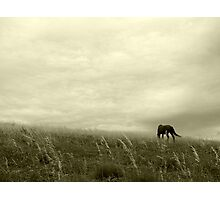 The Meeting of the Earth and the Sky Photographic Print