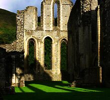 Valle Crucis Abbey by Carol Dawes