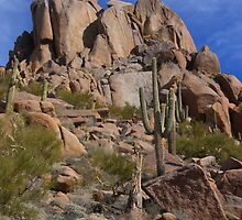 Pinnacle Peak - North Scottsdale  - Arizona by Bo Insogna