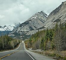 Driving through the Canadian Rockies by Dyle Warren