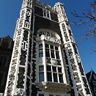 ccny by Jerry Deutsch