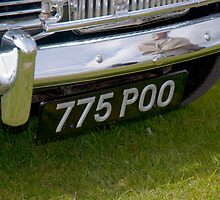 Number plate - Duxford, UK  by evilcat