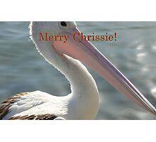 Aussie Chrissie-Pelican Photographic Print