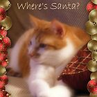 Where&#x27;s Santa? by Marie Sharp