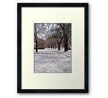 Snow-covered Yards Framed Print