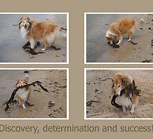 Determination by Roslyn Slater