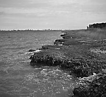 Ragged Coast by Edward Burton