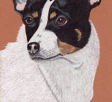 Rat Terrier Vignette by Anita Meistrell Putman