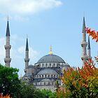 Blue Mosque, Istanbul, Turkey by SebastianPhoto