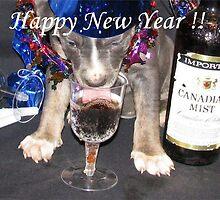 Happy New Year by Ginny York