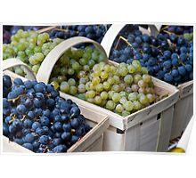 Basket of Grapes Poster