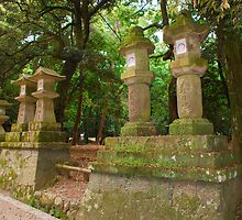 Stone Lanterns  by jojobob